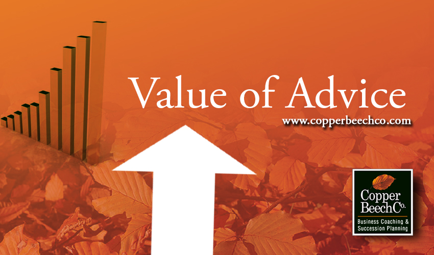 The value of advice in business