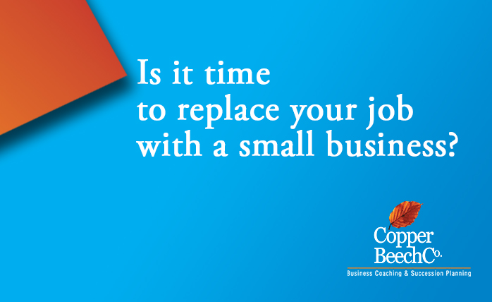 Replace your job with a small business